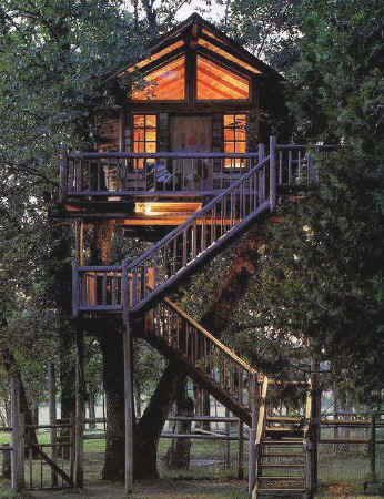 I believe people relate to tree houses. There seems to be a primal instinct  that draws us to a perch high in a tree. There are so many things that tree  ...